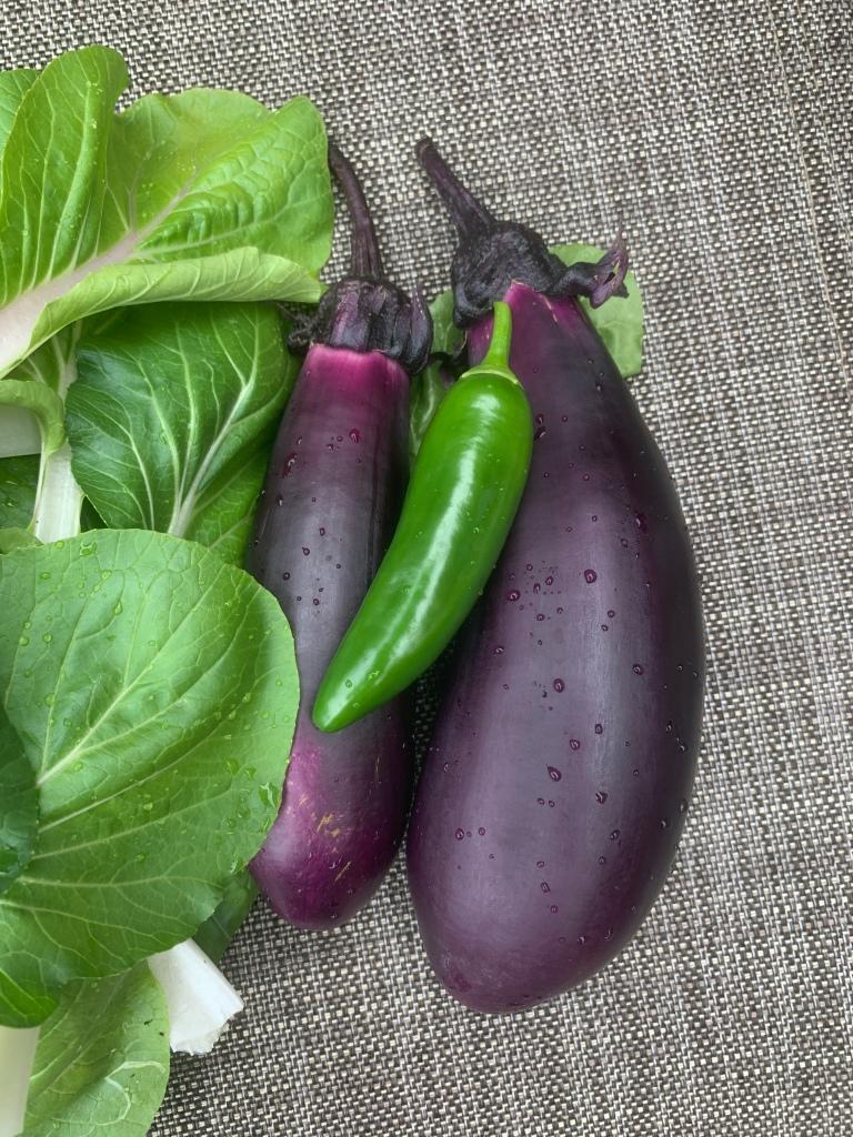 Eggplant, Jalapeño, Bok Choy
