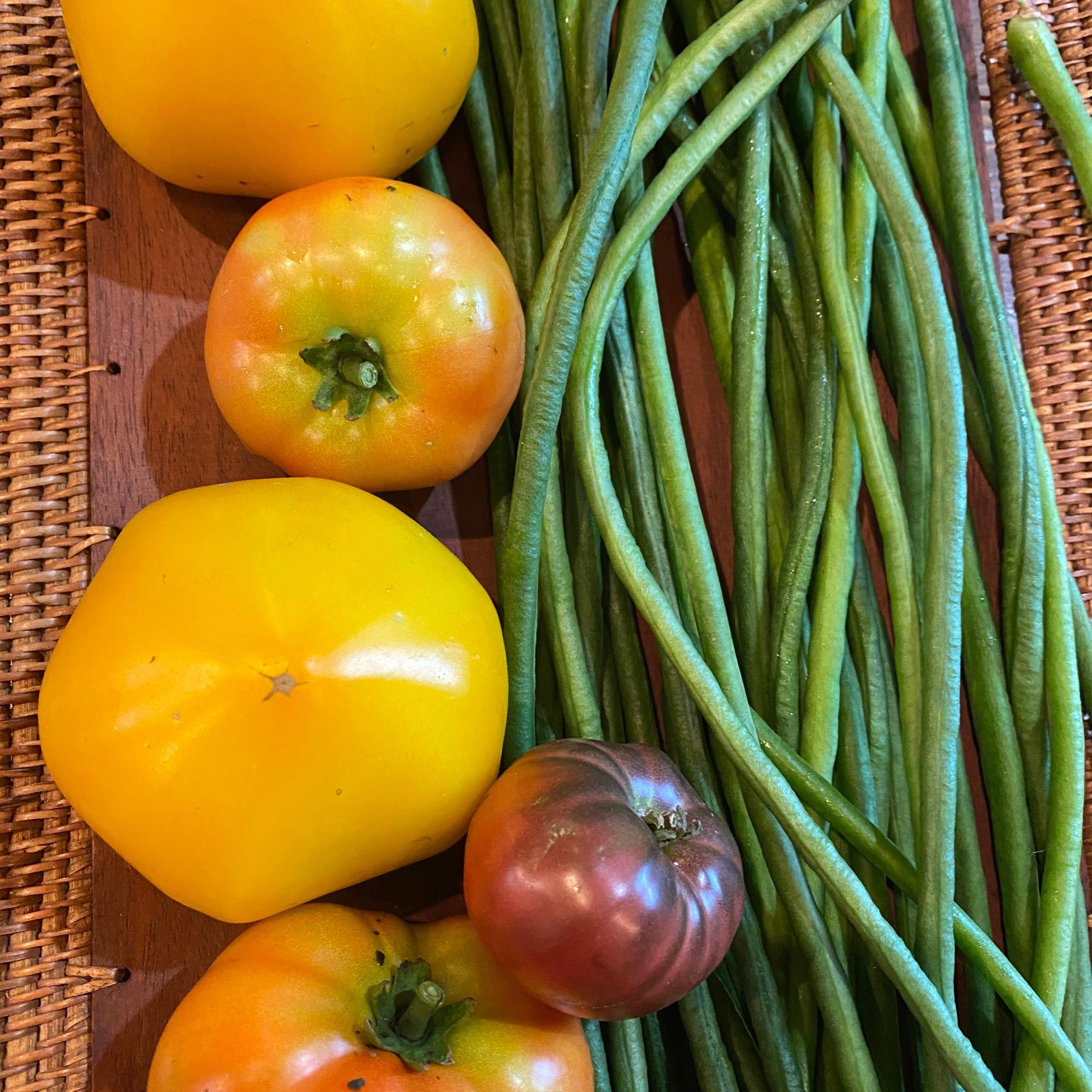 Golden Sunshine Tomatoes, Heirloom Tomatoes and Bora